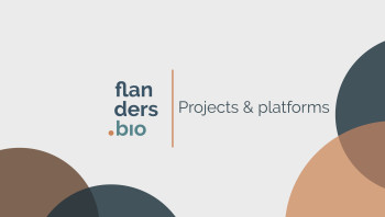 Projects & platforms