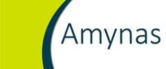 Amynas